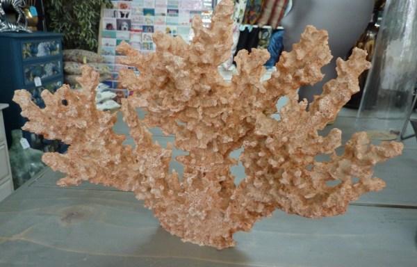 """Faux Coral Cream & Orange 13"""" Wide £22"""
