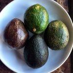Avocado–Is It Ripe Yet?