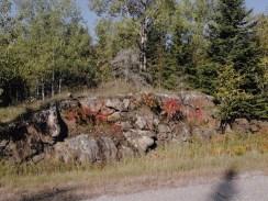 Glacial rock near the Rainy Lake visitor center