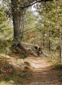 On the precipice above Vermilion Falls