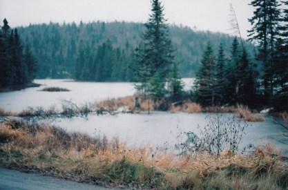 wetlands surrounding babbitt, mn