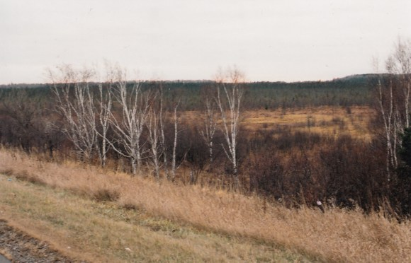 wetlands near mining country