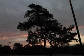 sunrise_october