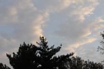 morning_sky