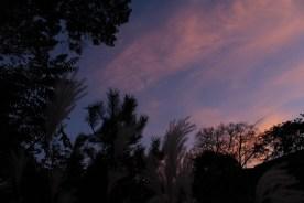 sunset_lh