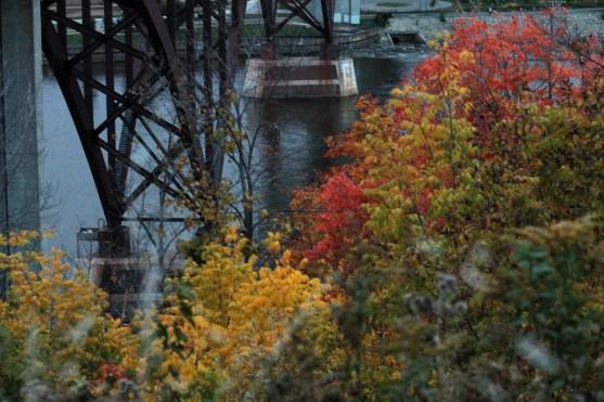 fall_color_high_bridge_1219a