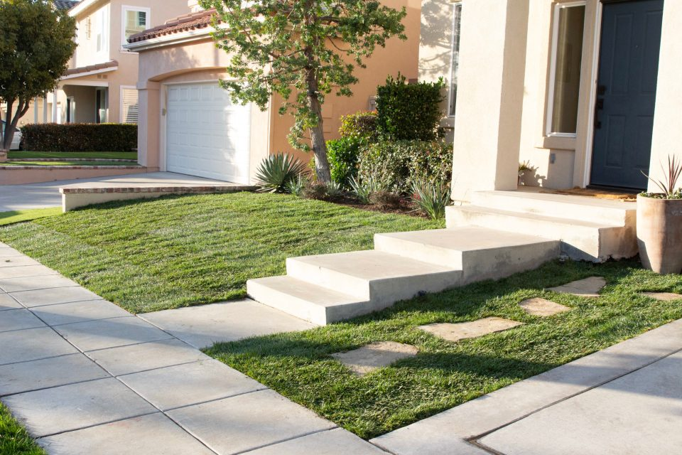 This fresh lawn is ready for long Summer Days!