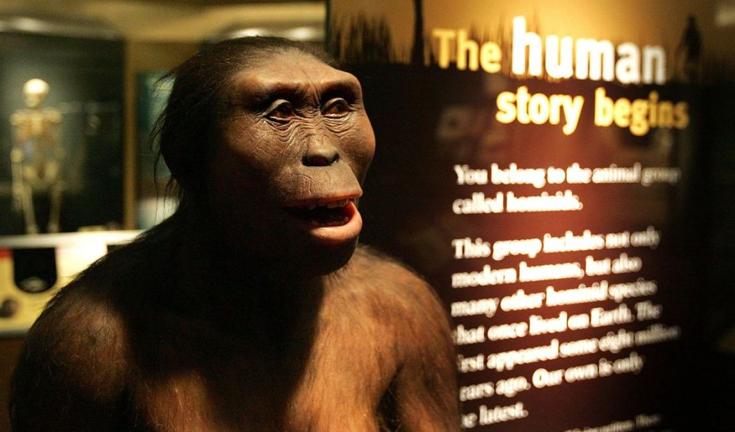 """""""Do NOT steal my thunder,"""" says Lucy, the early human ancestor found in present-day Ethiopia."""