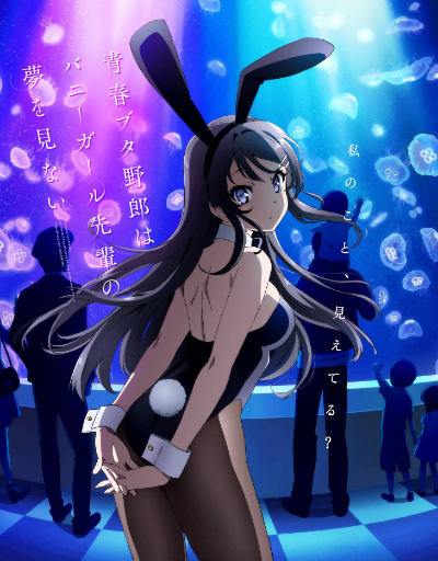 Rascal Does Not Dream of Bunny Girl Senpai Supernatural Anime of the Year