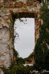 Window at Boštanj castle