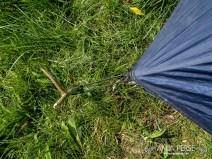 Tent peg imrpovisation