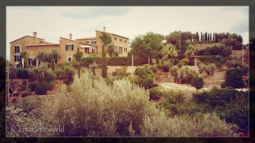 A country house which we passed on a hiking tour with a big olive grove.