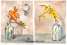 """A diptych of 9x12"""" wc on coldpress. I LOVE forsythia, I grew up in a house that had a huge hedge of them around a ditch behind it. They grew over it so it was like a secret tunnel for me to hide in. I HATE marigolds. I paint them a lot though. We always had these perfect rows of them growing around the yard. There are keys and a keyhole to tie these two paintings together. Along with a few of my antique glass jar collection as props. I love old jars, I wish I was brave enough to climb into old-timey toilet holes and dig them up. I think the stucco on the walls in these came out very nicely. The originals are still here, for sale. I plan to mat and frame them soon. I also have prints I've made on vellum-textured bristol, which I think came out nicely."""
