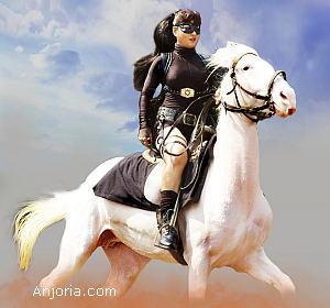 pakhi-action-horse