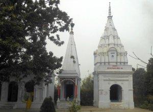 गोंड जाति का मंदिर, देवलास