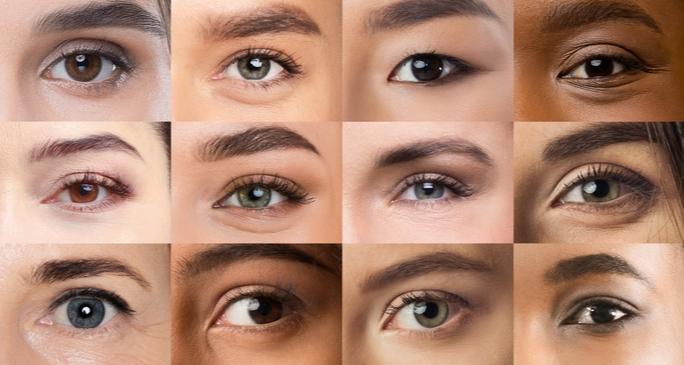 Augenkurs - Kollage