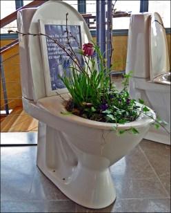 En blomstrande toalett