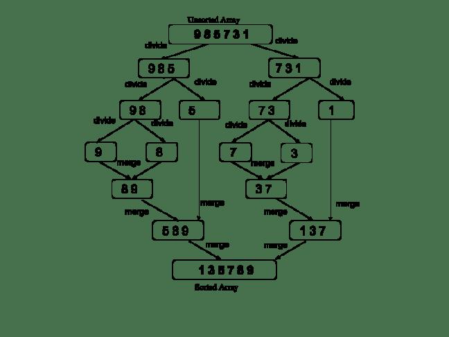 Merge Sort Algorithm In C#