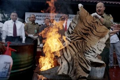 Petugas memusnahkan barang bukti hasil kejahatan konservasi sumber daya alam dan ekosistemnya di Lapangan Bhayangkara, Jakarta, Selasa (2/2)