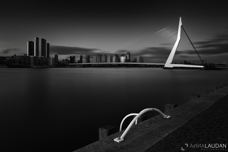 "Rotterdam: Part I ""Erasmus Bridge"""