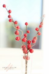 wpid-berries-in-window.JPG