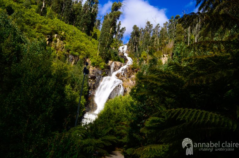 Steavenson Falls in Marysville, taken on spontaneous chasing waterfalls visit