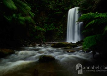 Beauchamp Falls visited during Chasing Waterfalls trip in Lorne