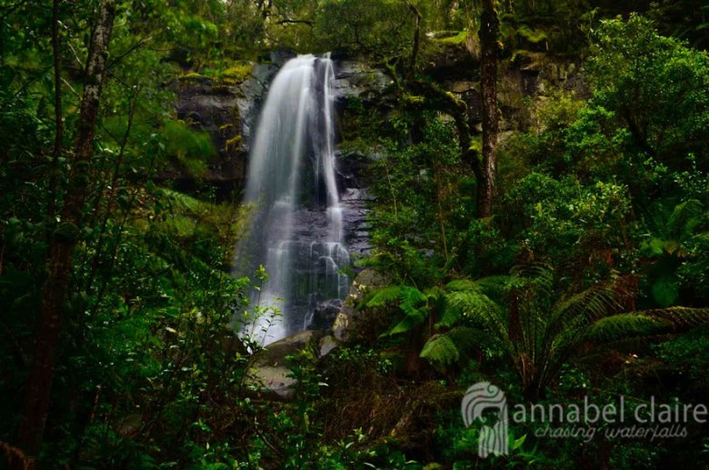Upper Kalimna Falls during Chasing Waterfalls trip to Lorne