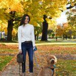 Theodore Mini Goldendoodle New Puppy Checklist Tips Annabel Gatto