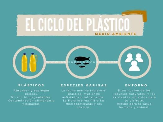 plásticos ciclo