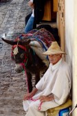 Locals inside the Fez medina