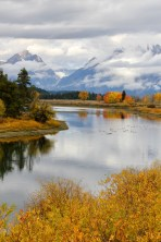 Yellowstone National Park - Oxbow Bend