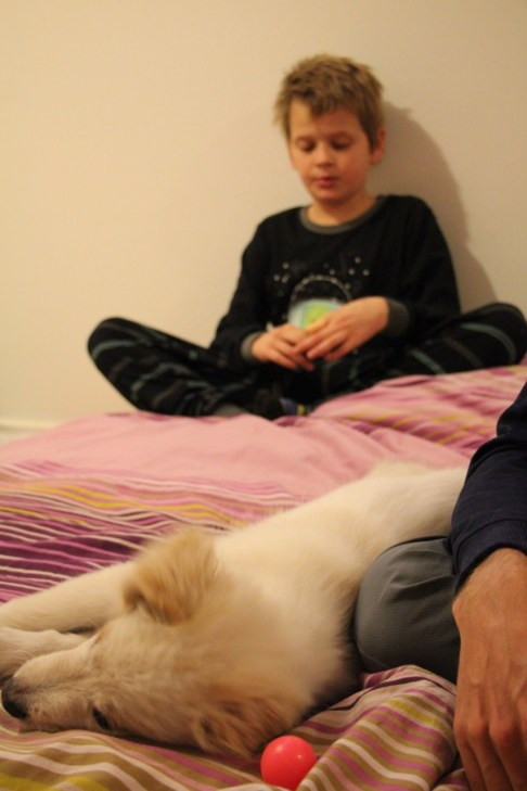 Gabriel relaxing with Canoush