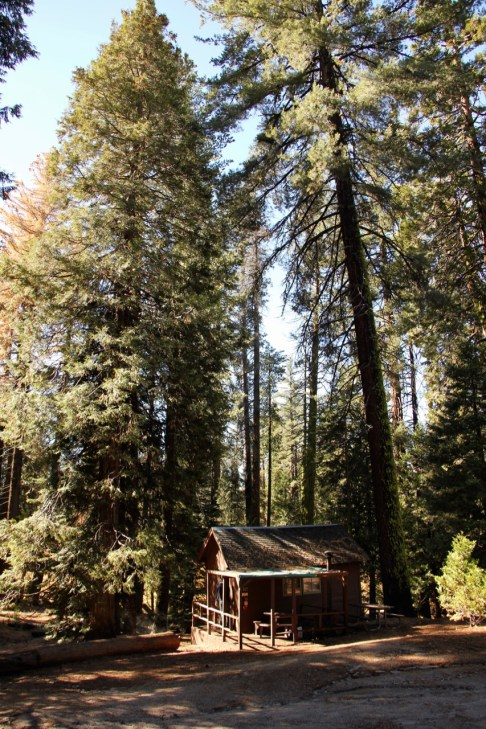 Our 'rustic cabin' in Kings Canyon National Park