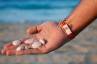 Collecting seashells in Varadero