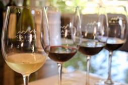 Wine tasting at Kaiken winery, Lujan de Cuyo, Argentina