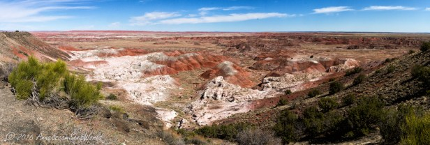 View from Painted Desert rim trail (starting from Tawa Point)