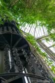 Royal Botanic Gardens (13)