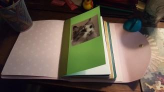 Plain pages cover