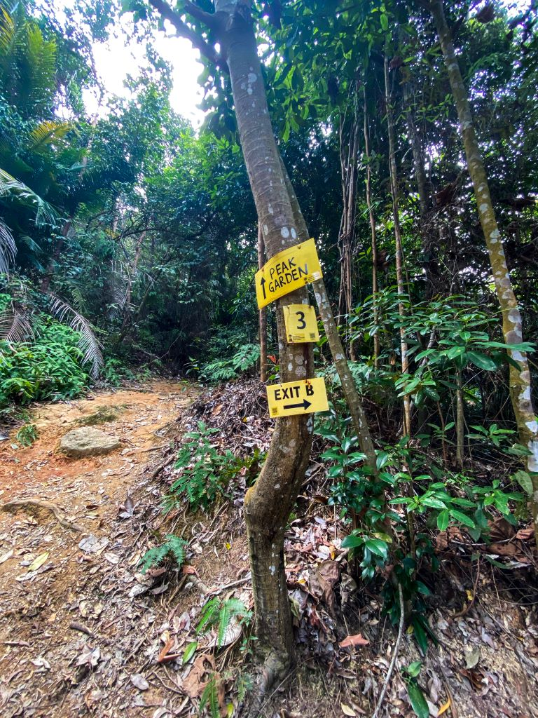 Yellow signages on a hiking trail