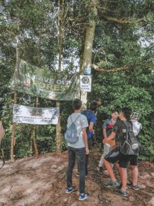 Save Our Forest Banner