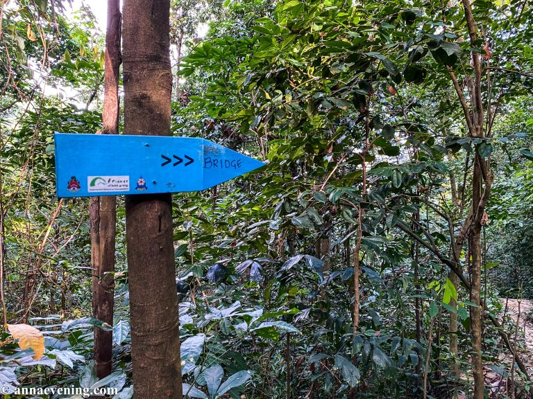 A blue arrow nailed to a tree pointing to the right with the word bungalow