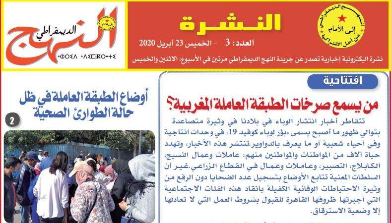 العدد 3 من النشرة الإلكترونية الإخبارية