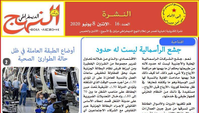 العدد 16 من النشرة الإلكترونية الإخبارية