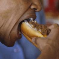 Obama spiser 10