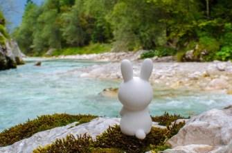 Lapinou en Voyage, sitting by Soča river