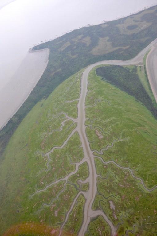Braided river