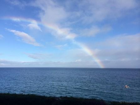 Rainbow everyday