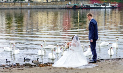 Wedding photo shoot near Vltava