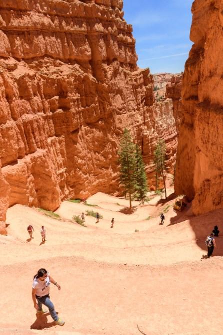 Navajo loop trail during mid-day